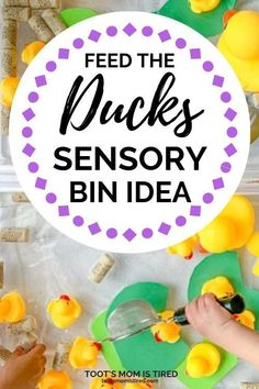 Feed the Ducks Sensory Bin for Toddlers & Preschoolers - Toot's Mom is Tired - Feed the Ducks Sensory Bin Idea for Toddlers and Preschoolers Quiet Toddler Activities, Toddler Fun, Sensory Activities, Toddler Preschool, Toddler Crafts, Preschool Activities, Play Activity, Preschool Plans, Toddler Learning
