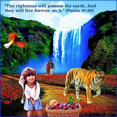 """It is beyond what my small brain can imagine Perfection is not yet real to us or even attainable until Jehovah says """"It is done."""""""
