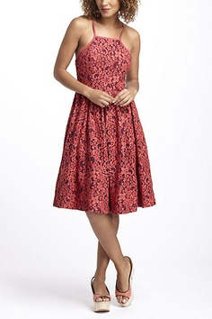 0a82fb61a9 Fit-And-Flare Garden Dress  anthropologie casual lace Pretty Outfits