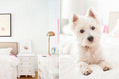 Pet Friendly Home Tour: Jess Lively & Franklin | Pretty Fluffy