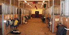 Boxes para caballos - Incofusta fabrica de madera en Valencia