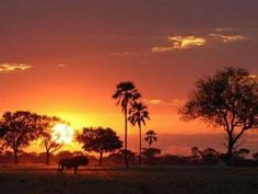 Zimbabwe: A beautiful land in need of a change of fortune - Africa - Travel - The Independent