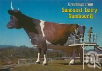"""<span class=""""caption-caption"""">The Big Ayrshire Cow, Nambour</span>, c1980. <br />Postcard by <span class=""""caption-publisher"""">Murray Views Pty Ltd</span>, collection of <span class=""""caption-contributor"""">Centre for the Government of Queensland</span>."""