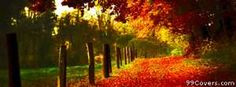autumn alley Facebook Cover
