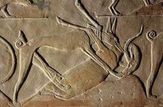 Ancient Egyptian Basenji wall carving.