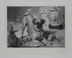 "Mischief. F.Sanyds pinxt. L.Flameng sculpt. London. Published 20th June, 1876 by Messrs Ellis & White, 29, New Bond Street. Etching on india. Plate 253 x 311mm. 10 x 12¼"". Printseller's Association Stamp. Water stain to the top left-hand side outside image. Some time staining around edges of the sheet. Very large margins.  A Pug rampaging through a knitting basket, with Chinese pot and furniture in background."