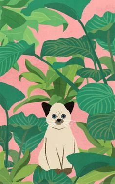 자연주의 작가 산그림_자연주의 고양이