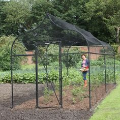 """Oh my goodness! Decadence! """"Ogee Arch Steel Fruit Cage with easy access door."""""""