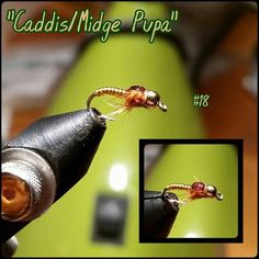 Awsome nymph. For more fly fishing info follow and subscribe www.theflyreelguide.com. Also check out the original pinners site and support