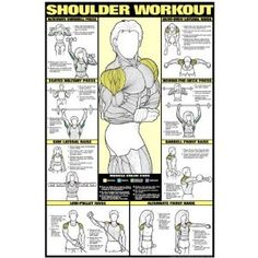 Shoulder Workout Fitness Chart (Co Ed)  Sports & Outdoors