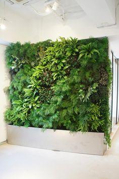 Green Wall d'JARDIN is part of Green wall garden – Small… - Modern Vertikal Garden, Vertical Garden Design, Moss Wall, Walled Garden, Paludarium, Large Plants, Plant Wall, Indoor Plants, Indoor Gardening