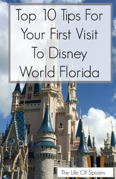 My top ten tips for your first visit to Disney World Florida