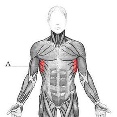 Fitness Motivation, Exercise Motivation, Superhero, Reiki, Anatomy, Health, Health Care, Workout Motivation, Gym Motivation