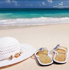Luxury Hotels That Make For Stunning & SAFE Honeymoon Destinations In India - Witty Vows Diffuser Oil Refill, Mist Diffuser, Roll On Perfume, Beauty Companies, Beach Vacation Rentals, Honeymoon Destinations, Honeymoon Essentials, Destin Beach, Starting Your Own Business