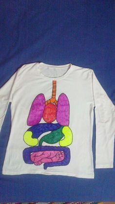 Ic organlar
