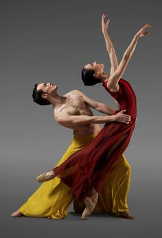 z- Clytie Campbell & B Bradshaw - 'From Here to There', 2010 (Royal New Zealand Ballet)