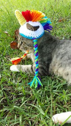 Unicorn Cat Hat, Unicorn Hat for Cats and Small Dogs, Unicorn Costume for Cats…