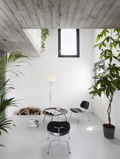 casa rizza by studio inches architettura