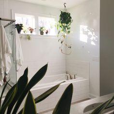 white bathroom, plants, subway tile