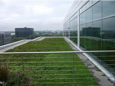 Facilities Management Feature: Green Roofs: A Sustainable Solution for Energy Savings