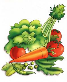 Mi Escuela Divertida: Alimentos