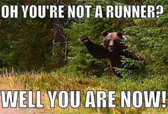 Oh, you're not a runner? #fitness #funny #bear