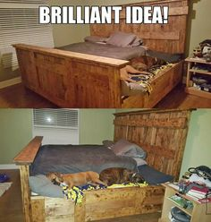 I want this for my pets!