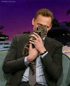 "Imagine Tom traveling with a pet cat quoting-shakespeare-to-ducks: "" "" haveahiddles: "" quoting-shakespeare-to-ducks: "" First class seat purchased for the kitty, getting treats from the. Thomas William Hiddleston, Tom Hiddleston Loki, Animal Movement, Series Movies, Tv Series, Book Fandoms, My Prince, Robert Downey Jr, Man Alive"