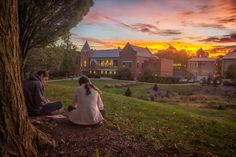 Beautiful Catholic College Campus! Click to learn more! Franciscan University, Catholic Colleges, College Campus, Image Types, Higher Education, Biology, Google Images, Chemistry, Homeschool