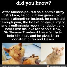 This is super sweet! I'm so glad that there is someone who cares about the animals out in the world! :)