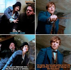 "Fantastic Beasts and Where to Find Them - ""He's hurt! He looks ill.""  ""He'll be fine."""