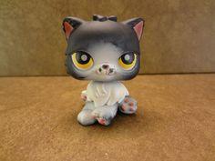 #435 Persian Cat 2007