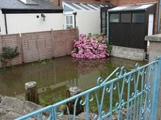 Flood Damage Clean Up: Tips For Minimizing Flood Damage In The Garden