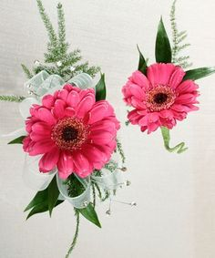 Package Gerbera Daisy Corsage & Boutonniere