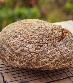 Chleb rustykalny Hamelmana - przepis ze Strefa Wypieków Banoffee Pie, Muffin, Nutella, Breakfast, Cake, Bread, Morning Coffee, Pie Cake, Muffins