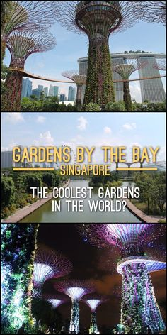 Gardens by the Bay is one of the top tourist attractions in Singapore. Are these…