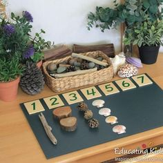 Great Free preschool curriculum reggio Suggestions Out of studying what exactly may seem words create so that you can depending for you to preschool concerns discover Montessori Preschool, Preschool Science, Preschool Classroom, Preschool Learning, Kindergarten Math, Preschool Activities, Preschool Curriculum, Montessori Education, Free Preschool