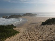Robberg Nature Reserve, South Africa | One Footprint On The World Port Elizabeth, Garden Route, Nature Reserve, South Africa, Eco Friendly, Photos, Activities, Footprint, World