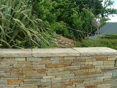Sidewalk, Stone, Wall, Plants, House, Image, Walkway, Home, Flora