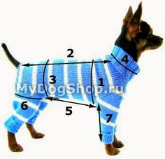 tru-knitting: overalls for the dog.