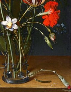 ⭐️Jacob van Hulsdonck ANTWERP 1582 - 1647 STILL LIFE OF TULIPS, CARNATIONS, A ROSE AND OTHER FLOWERS IN A GLASS Carnations, Tulips, Old Paintings, Botany, Baroque, Still Life, Peonies, Watercolor, Sculpture