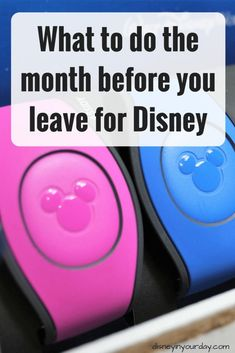 What to do the month before you leave for Disney - Disney Parks and Cruises Dvd Disney, Disney Cute, Disney World Florida, Disney World Parks, Disney Tips, Disney Travel, Disney World Rides, Disney Worlds, Florida Vacation