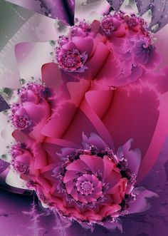 Rosa  centifolia by GrannyOgg.deviantart.com on @deviantART