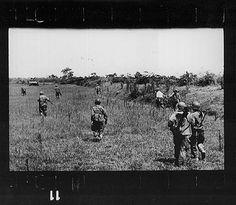 ROBERT CAPA Nam Dinh, South of Hanoi, Vietnam May 25th, 1954  Last roll of film, the road to Thai Binh.