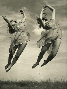 Swallows (1930s)  Vladimir Tolman