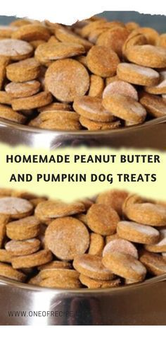Dog Cookie Recipes, Easy Dog Treat Recipes, Dog Biscuit Recipes, Dog Food Recipes, Peanut Butter Dog Treats, Homemade Peanut Butter, Homemade Dog Treats, Doggie Treats, No Bake Dog Treats