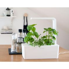 Smart Herb Garden Mini Tomato Refill Cartridge | Click And Grow Smart Herb  Garden | Pinterest | Herbs Garden, Herbs And Growing Herbs Indoors