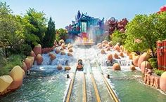 In the heart of the Sunshine State, you will find Orlando, packed with theme parks, restaurants, and limitless activities | Find Flight deals to Orlando from £309