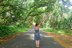 10 choses à faire à Hilo, HAWAII