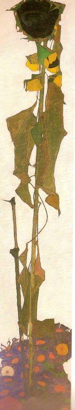 Sunflower, 1917 by Egon Schiele (Austrian, 1890–1918)